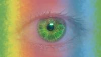 Иридодиагностика схема радужной оболочке глаза 541